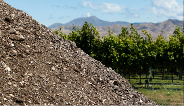 Marlborough winemakers doing nicely while polluting their own nest.