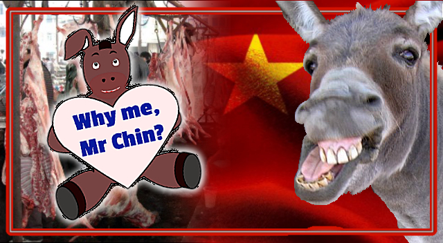 No Living Creature Is Safe! China Hungry for Donkeys.