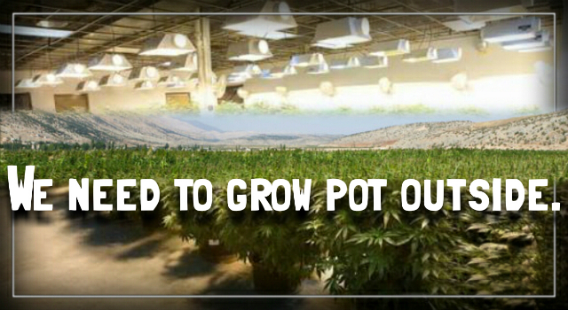 The Marijuana Boom Is Contributing to the Climate Crisis.