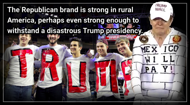 Who are these rural, red-county people who brought Mr. Trump into power? – Robert Leonard.