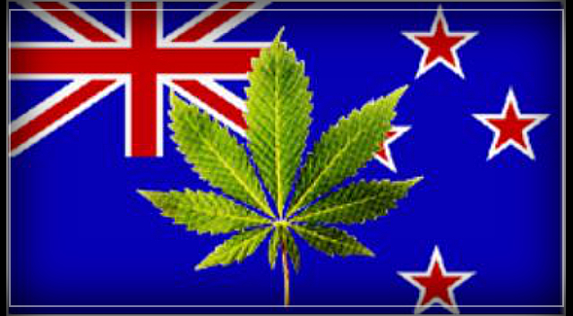 Kiwi entrepreneurs call for legalisation of cannabis, following worldwide success – Craig Hoyle.