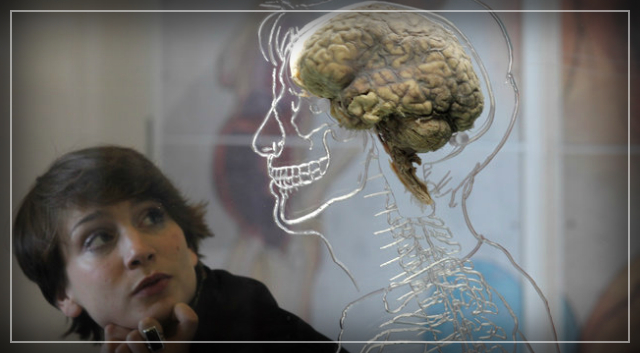 Scientists Are Attempting to Unlock the Secret Potential of the Human Brain – Philip Perry.