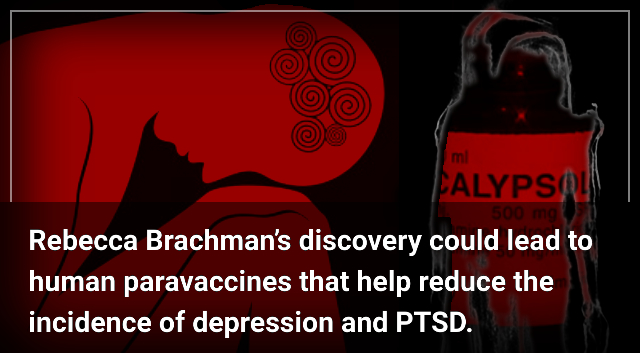 A Chance Discovery May Lead to a Vaccine for Depression and PTSD – Robby Berman.