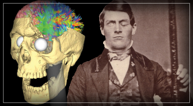 phineas gage Mr fleischman discussed his book [phineas gage: a gruesome but true story about brain science], published by houghton mifflin company.