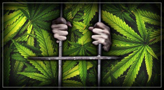 We have waged war on drugs for a century. So who won? – Alex Wodak.
