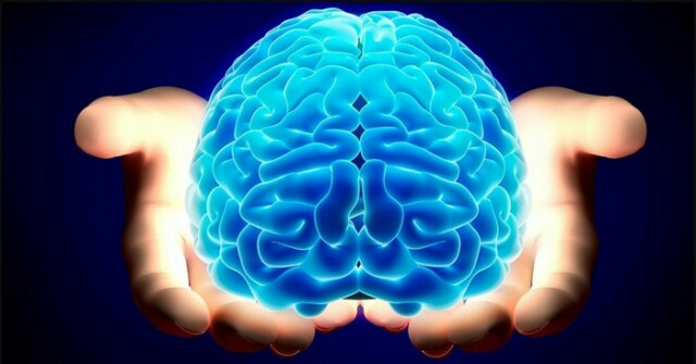 How To Hack Your Brain And Learn EVERYTHING You Want! – Curious Mind Magazine.