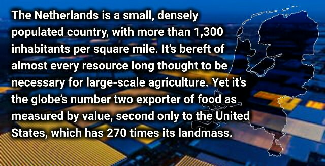 New Zealand, take a bow. The Netherlands. This Tiny Country Feeds the World – Frank Vivian.