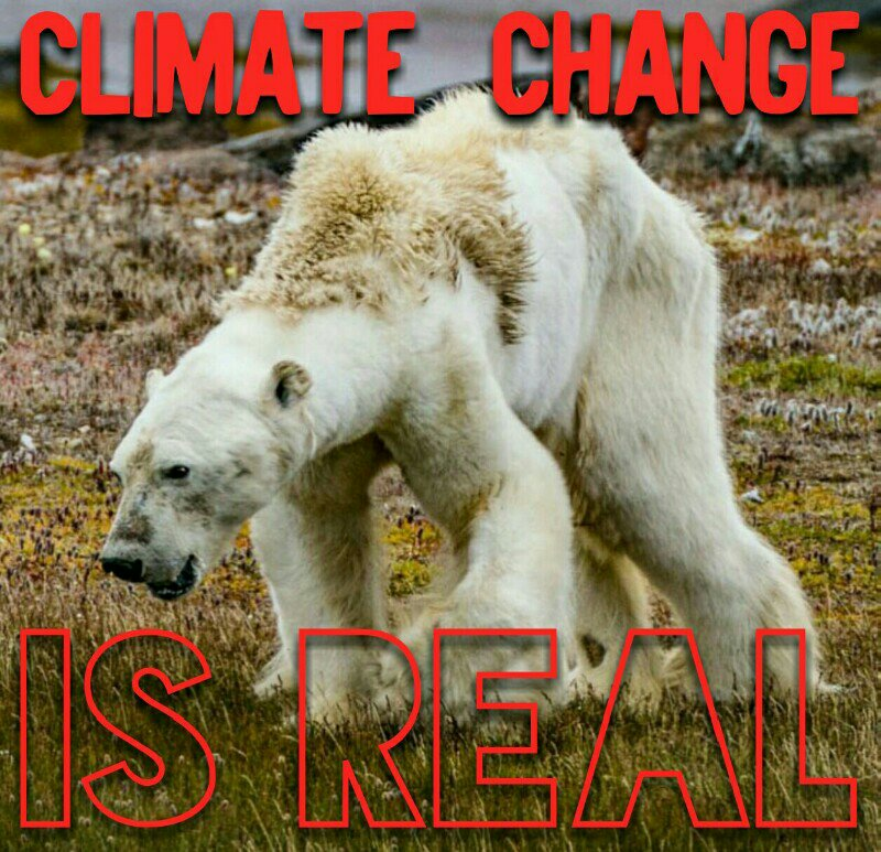 Climate Shock The Economic Consequences Of A Hotter Planet Gernot