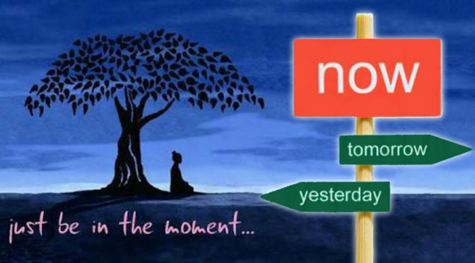 The Calm Button, a Sober look at Mindfulness. Mrs D Is Going Within – Lotta Dann.