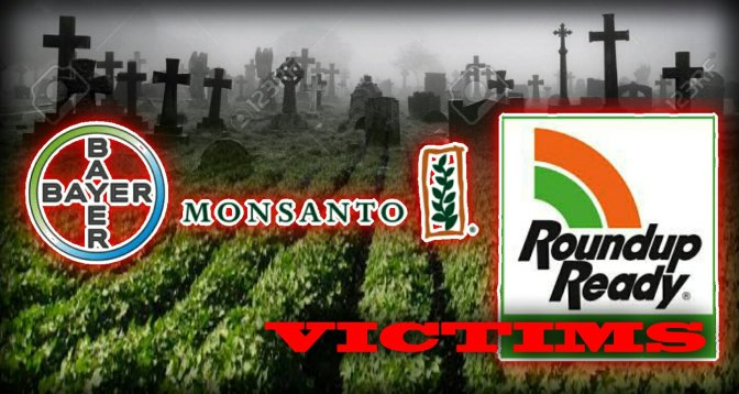 MONSANTO: Secret tactics chemical giant used to protect star product Roundup – Shireen Khalil.